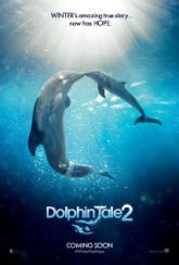 Download Dolphin Tale 2 2014 Movie Online