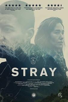 Stray 2018