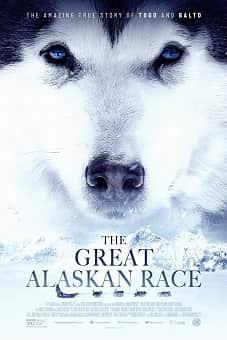 The Great Alaskan Race 2020