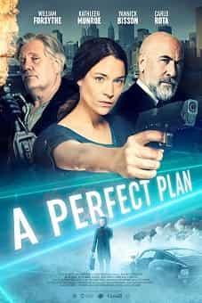 A Perfect Plan 2020